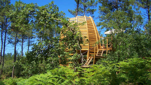 Escapada en una cabaña en un árbol en el corazón del parque regional de Gascogne