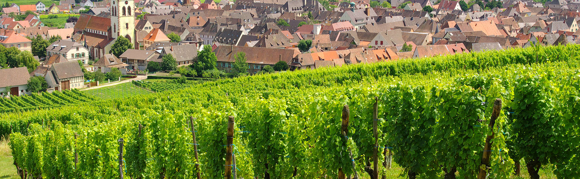 Escapade romantique sur la route des vins