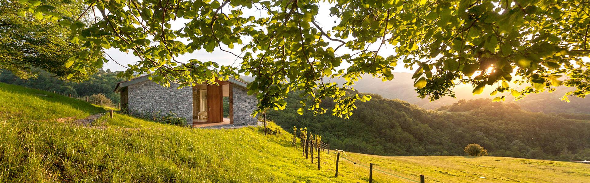 La nature et l'aire pure dans une cabane design