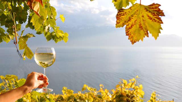 Week-end avec dégustation de vins dans un hôtel de charme près d'Auxerre