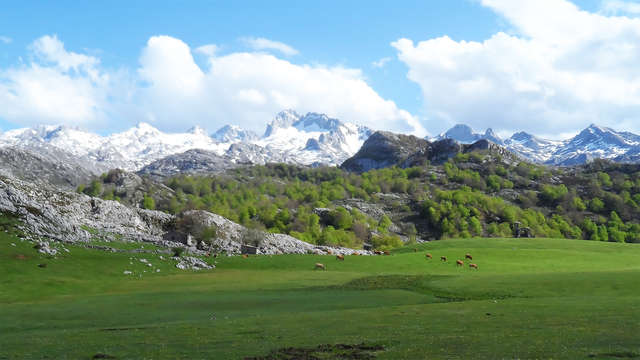 Week-end dans le parc national des Pics d'Europe avec visite d'une cave à Vins et dégustation