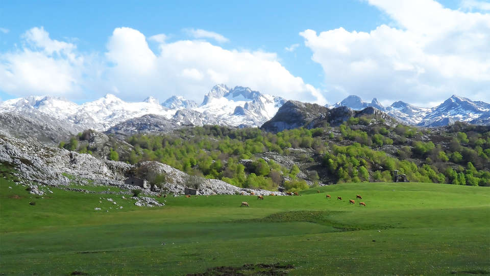 Posada Valle del Oso - EDIT_destination2.jpg