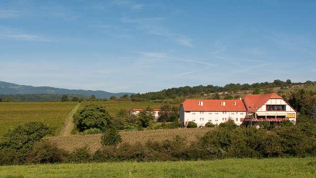 Hotel du Bollenberg