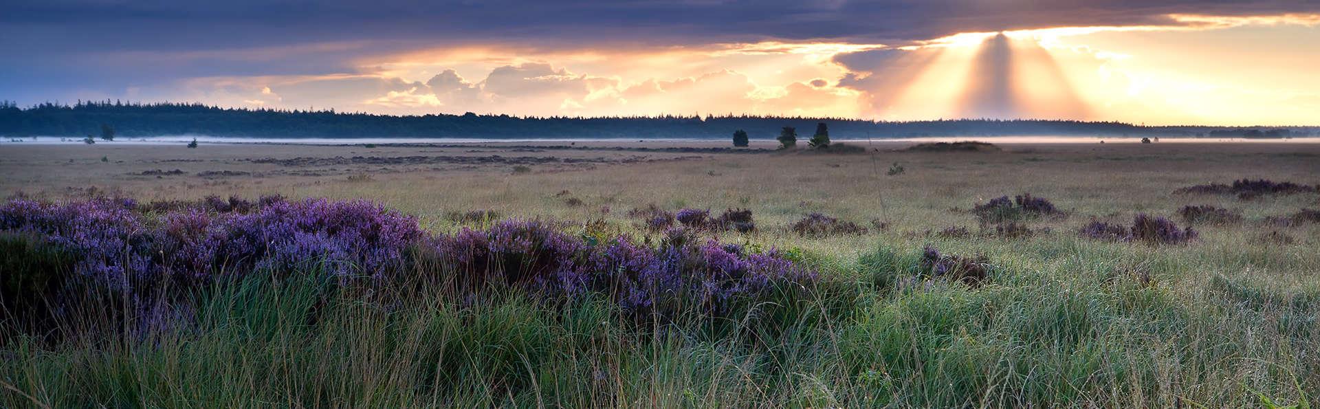 Entre nature et beauté à Drenthe, aux Pays-Bas (3 nuits au prix de 2)