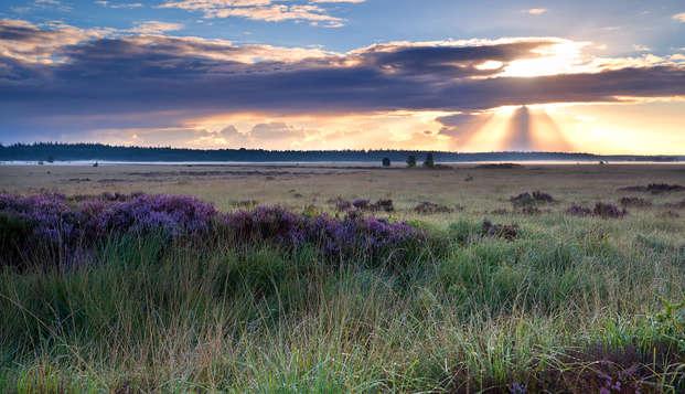 Prachtige natuur in het hart van Drenthe (3 nachten voor de prijs van 2)