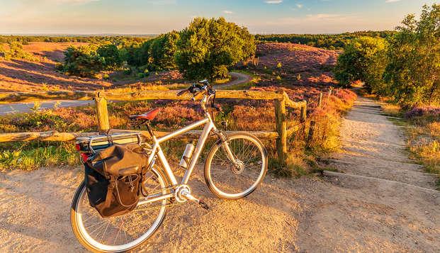 Ontdek de Veluwe op een E-Bike en geniet van een diner (vanaf 2 nachten)