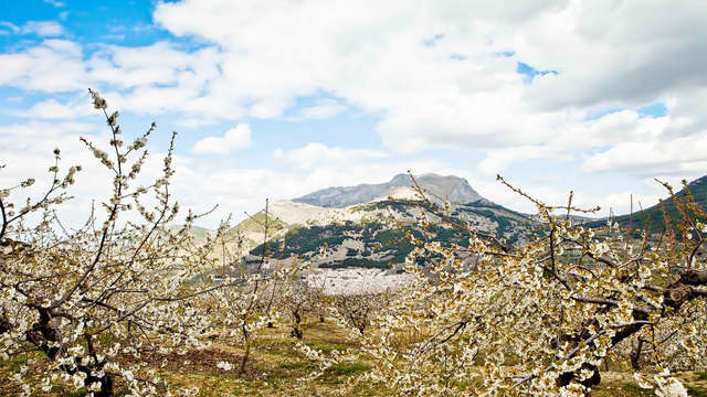 Déconnexion et relax en plein cœur de la Sierra Mágina