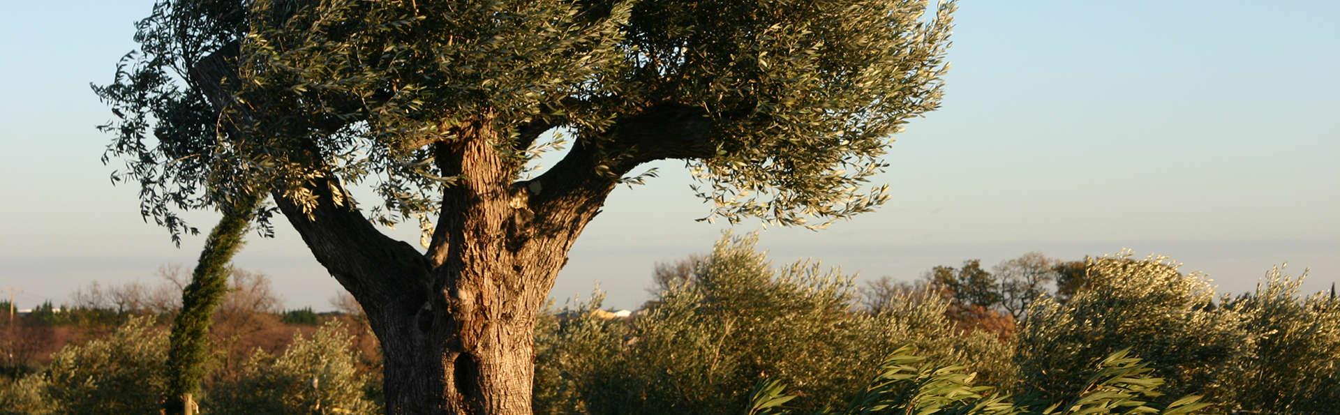 Week-end à la découverte de la Camargue avec visite d'une oliveraie