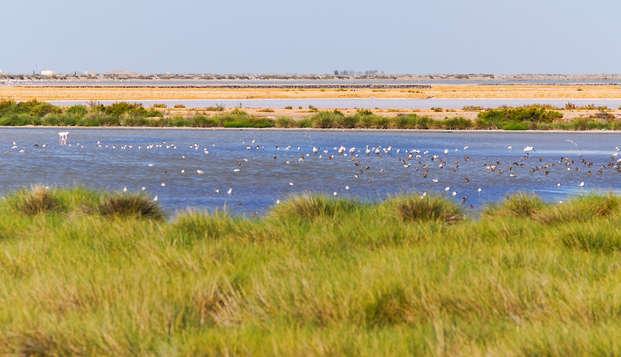 Escapada con encanto cerca del Parque Natural de Doñana