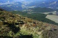Reserva de la Biosfera de Urdaibai -