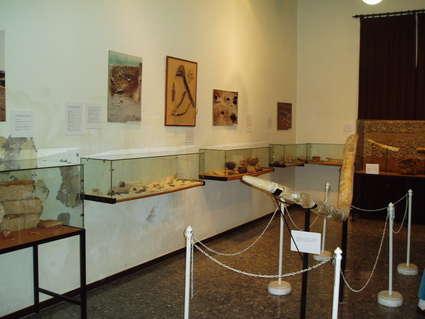 Museo Municipal de El Puerto de Santa María
