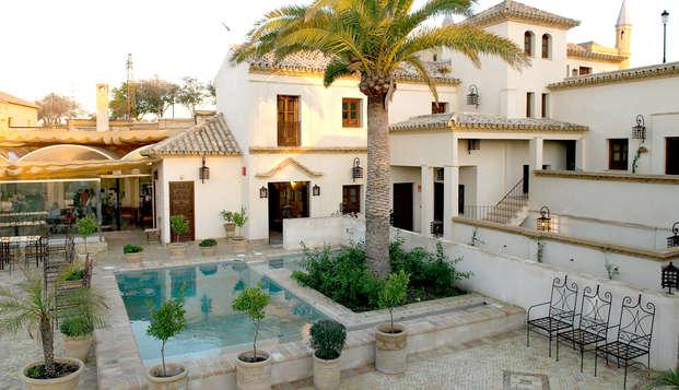 Week-end à Osuna : Découvrez les environs de Séville