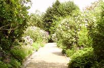 Jardin botanique Jean Massart -