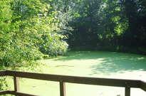 Parc du Bergoje -