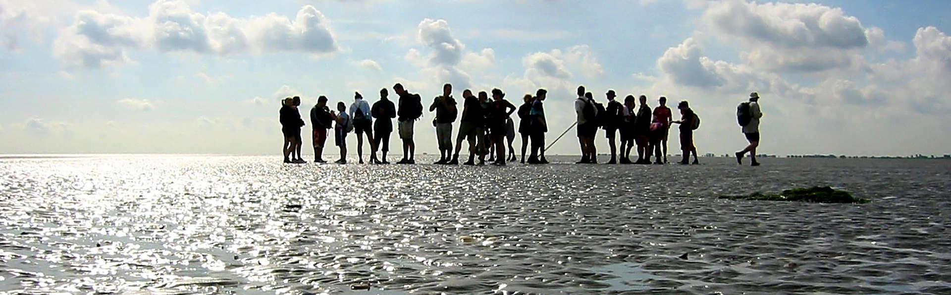 Fletcher Resort-Hotel Amelander Kaap - edit_Wadlopen.jpg
