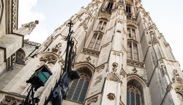 Mechelen op grote hoogte