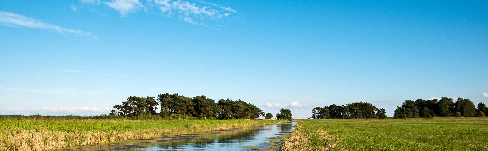 Op de fiets door prachtige Friese natuurgebieden