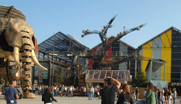 Week-end découverte de Nantes avec entrée aux musées et croisière sur l'Erdre