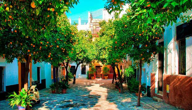 Alcoba del Rey de Sevilla Boutique Hotel - destination