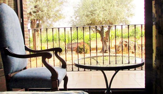 Escapada con cena entre viñedos en Aranda de Duero (Desde 2 noches)