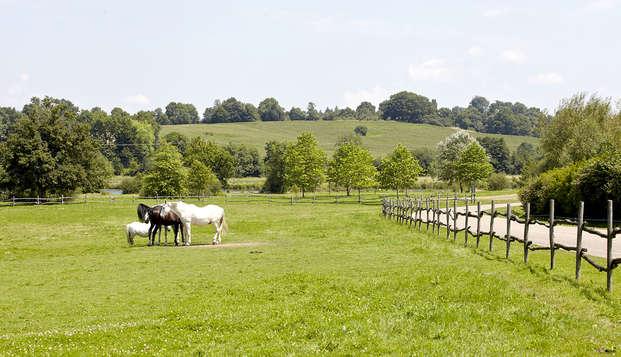 Natura Resort Pescalis - Horses