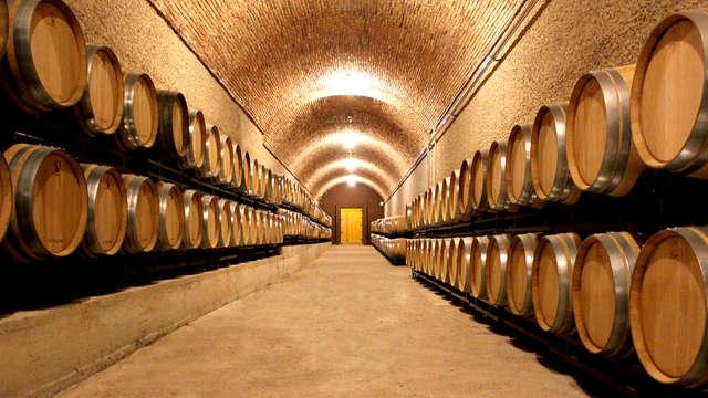 Especial ruta de vinos: visita la Rioja en un hotel bodega con visita enológica