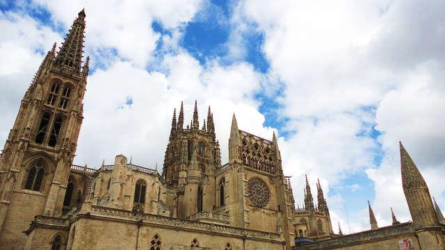 Oferta Especial: Descubre el encanto y la gastronomía de Burgos (desde 2 noches)