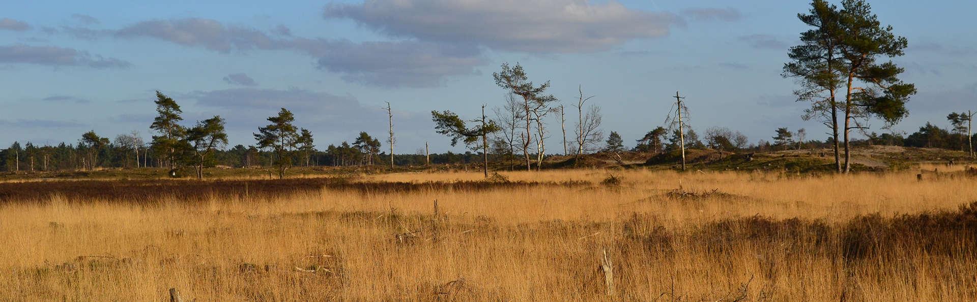 Op de fiets door natuurgebieden vlak bij 's Hertogenbosch