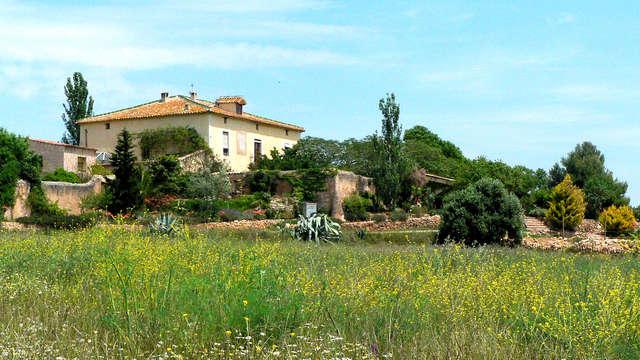 Escapada con visita a una bodega y cata de vinos del Penedès