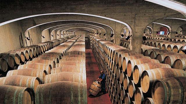 La Rioja al completo: Spa, Cena típica y visita a Bodega Lecea con cata de vinos