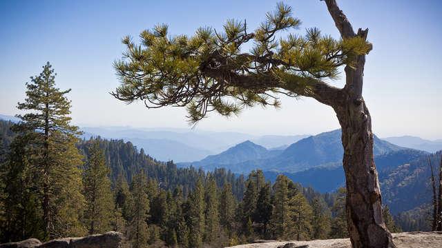 Escapada en habitación cuádruple: Descubre Sierra Nevada con amigos o en familia