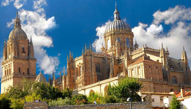 Escapada con visita a las dos Catedrales y al Museo Casa Lis en Salamanca (desde 2 noches)