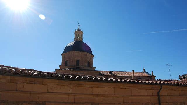 Vive Salamanca con entradas a la Catedral y al Museo Casa Lis (desde 2 noches)