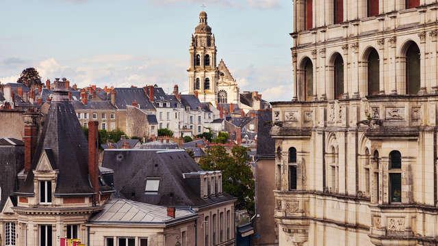 Ibis Blois Vallee Maillard
