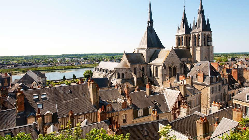 Ibis Blois Vallée Maillard - Edit_Blois.jpg