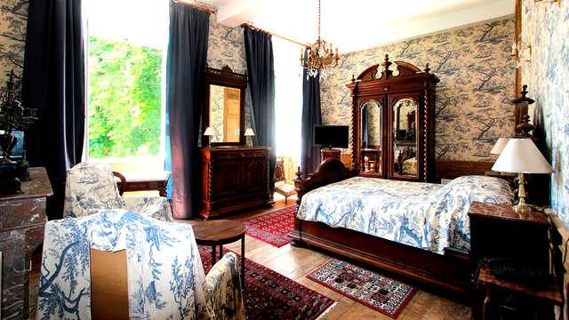 Chateau d Island Vezelay