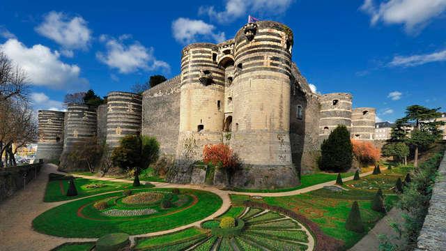 Découverte d'Angers et visite de son château