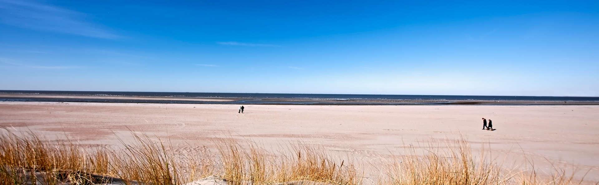 Fietsen door de duinen van Zuid-Holland