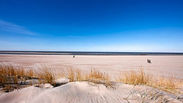 Struinen langs de duinen nabij Leiden