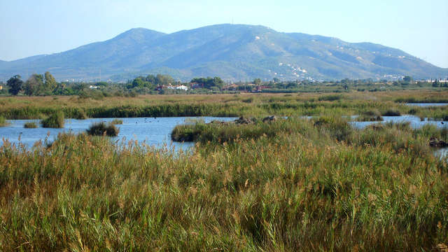 Escapada rural en Cabanes, en la Vall d'Uixó