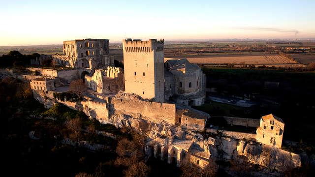 Descubre Arlés y visita la abadía de Montmajour