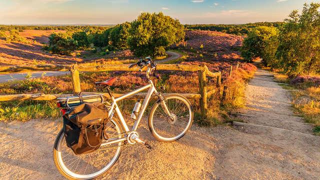 Vélo dans l'environnement unique de le Veluwe