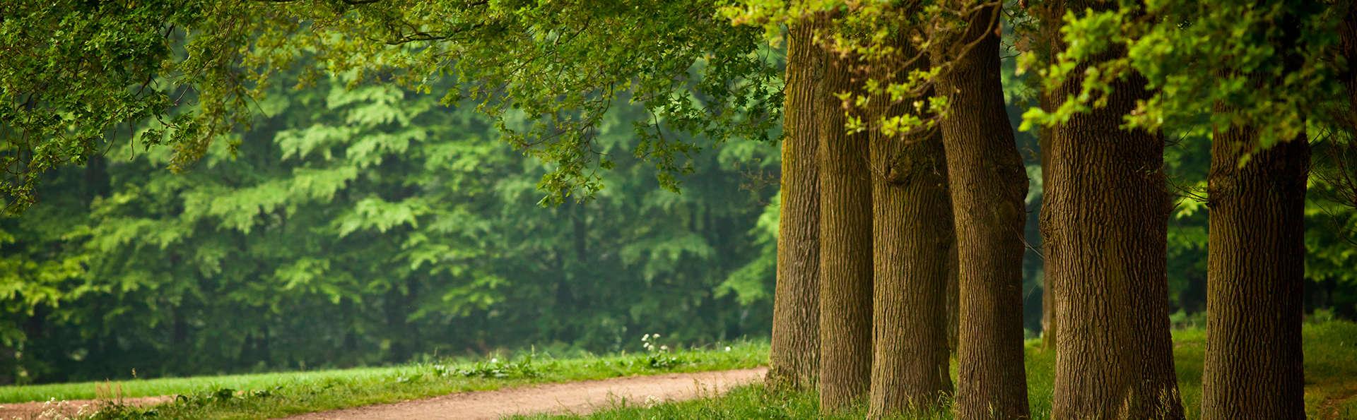 Dîner dans le cadre verdoyant de la province de Gueldre