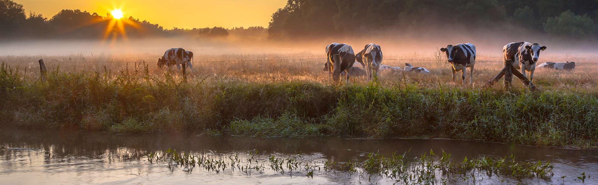 Détendez-vous dans la région de la Twente avec vélo et dîner (à partir de 2 nuits)