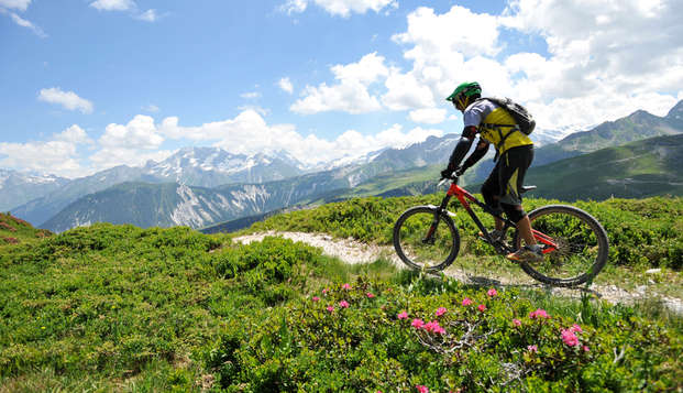 Vue sur le Mont-Blanc au cœur des montagnes