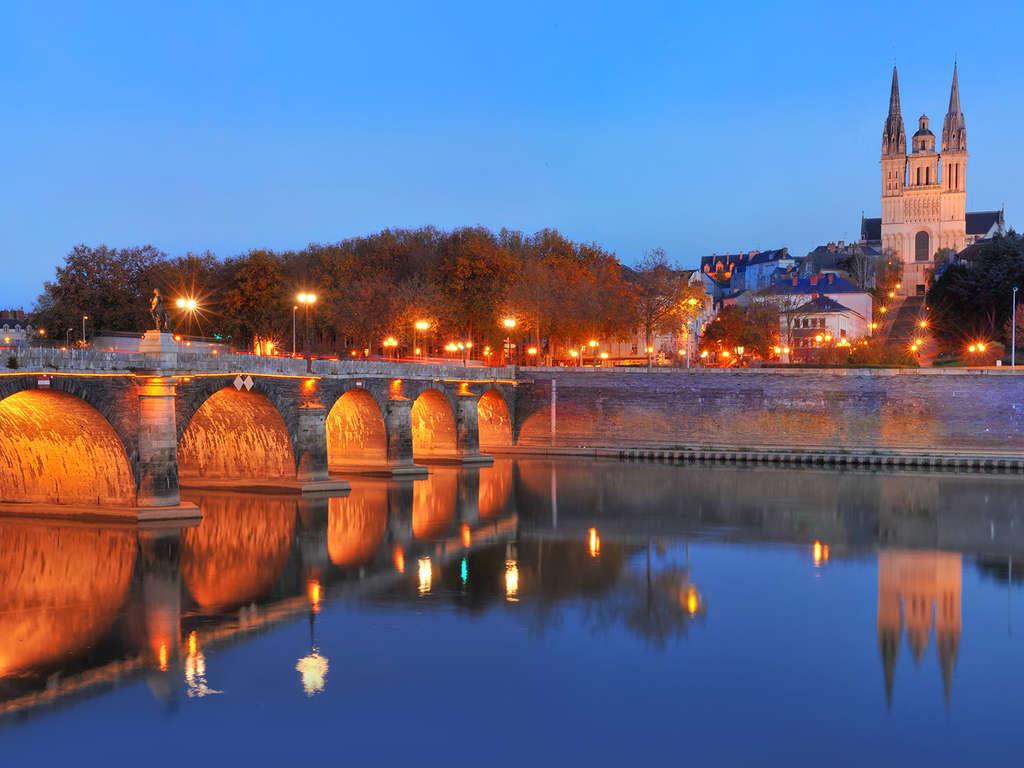 Séjour Angers - Séjour au coeur d'Angers en famille ou entre amis  - 3*