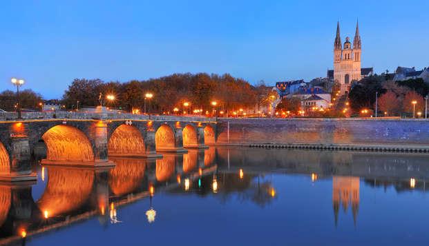 Séjour au cœur d'Angers en famille ou entre amis