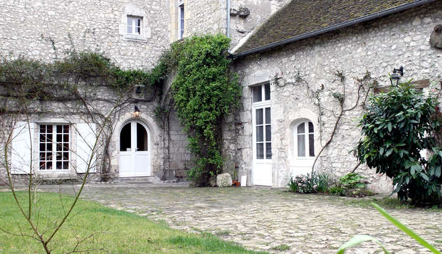Le Relais Louis XI - Yard