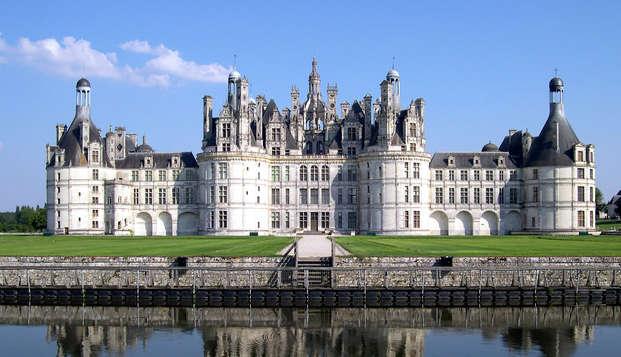 Cerca de Orleans con entradas para el castillo de Chambord