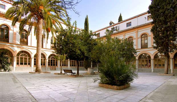 Descubre Granada y respira su encanto